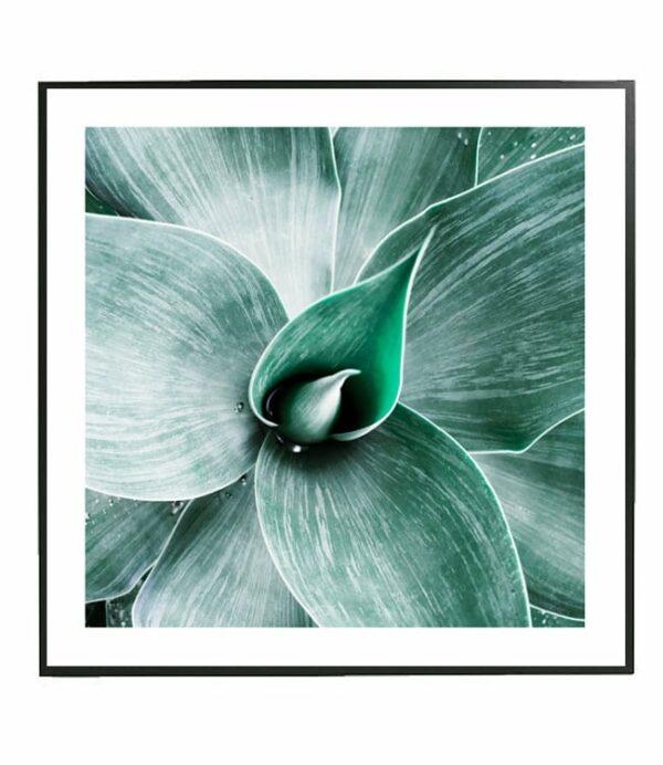 agave art print design studio la forma