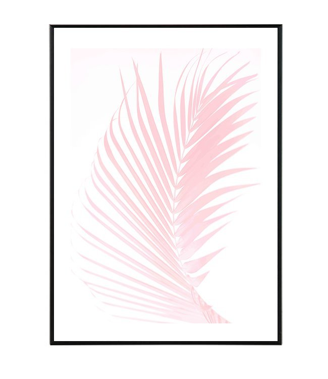 Palma rostlina obraz design studio La forma