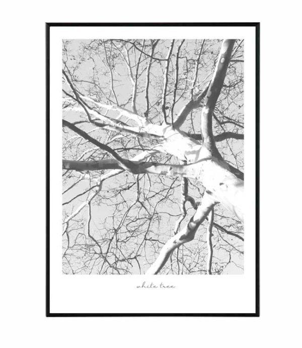 White tree 9