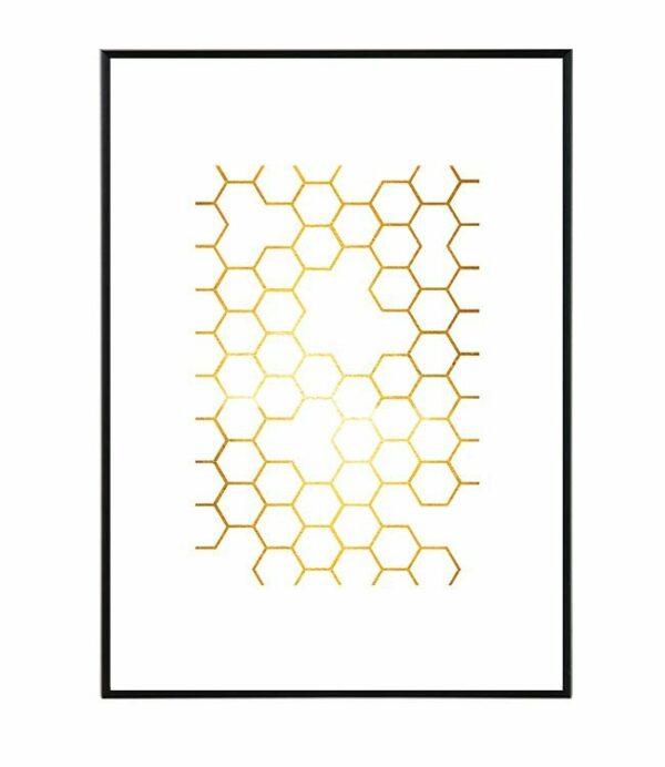 Honey 8