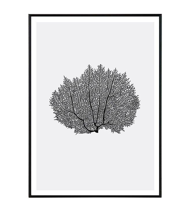 koral obraz design studio La forma