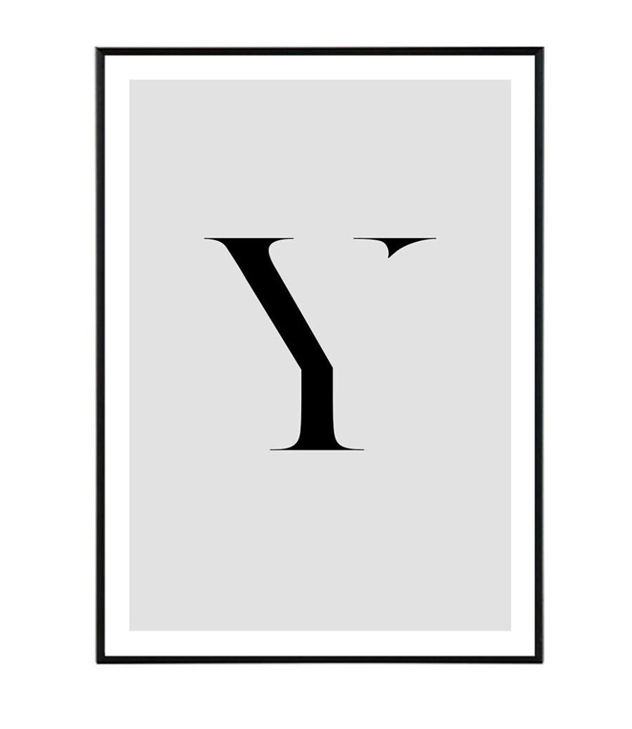 Letter Y 1