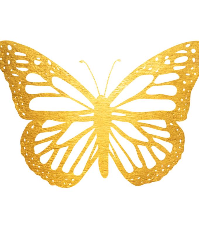 obraz motyl design studio la forma
