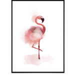 Flamingo 13