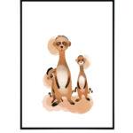 Curious meerkats 11